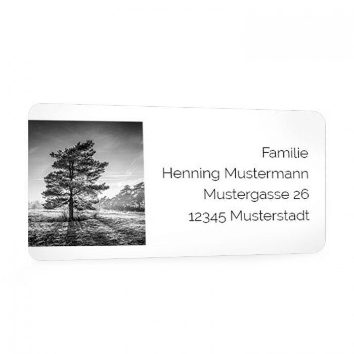 Für Ihre Trauerpost - Adressaufkleber mit Baummotiv