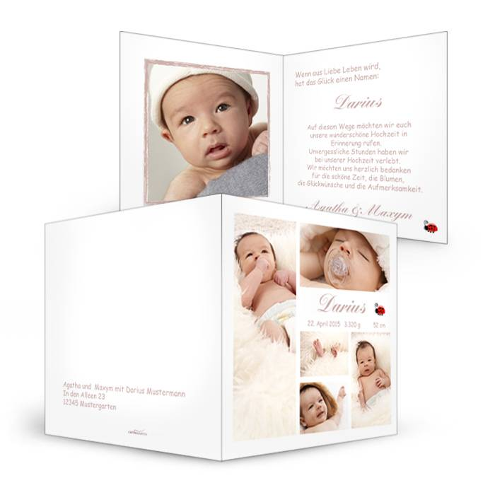 Geburtskarte mit Marienkäfer und Platz für viele Fotos