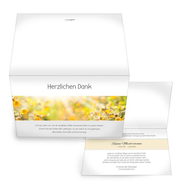 Trauerkarte mit gelbem Rapsfeld und Sonnenstrahlen